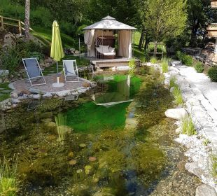 Schwimmteich 2 Gartenhotel THERESIA