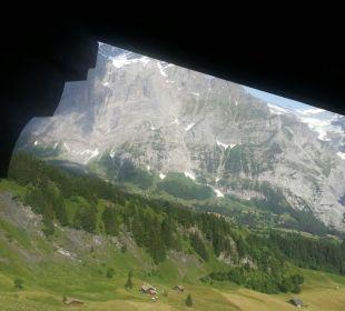 Wetterhorn und Kuhglocken gleich vor dem Fenster Hotel Berghaus Bort