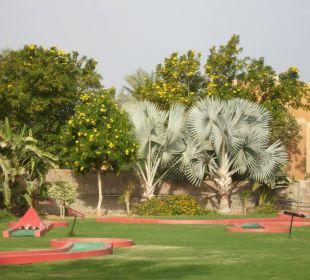 Palmen Stella Di Mare Beach Resort & Spa Makadi Bay