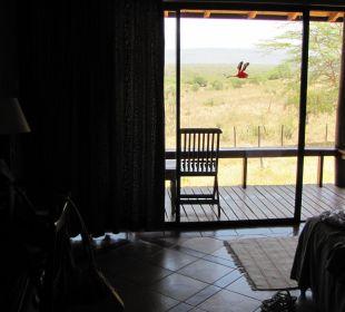 Номер Hotel Lake Nakuru Lodge