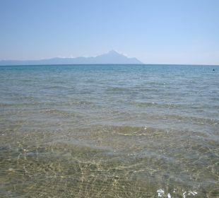Strand 50m vom Hotel - kristallkalres Wasser Apollon Xenonas Apparthotel