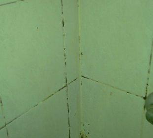 Verschimmelte Ecke im Dusch-Bad The Green Park Hotel Taksim