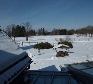Ausblick von unserem Zimmer Hotel Harzhaus