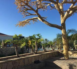 Grosser Platz Lopesan Villa del Conde Resort & Spa