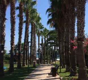 Gartenanlage Barut Arum