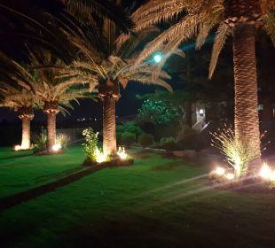 Gartenanlage Hotel Minos Mare Royal