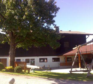 Viel Platz zum Toben uns Spielen Bauernhof Weidinghof