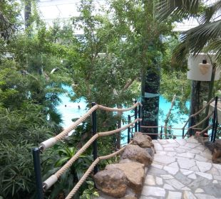 Pool Center Parcs Het Heijderbos
