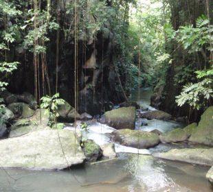 Hotel Fluß Hotel Nandini Bali Jungle Resort & Spa