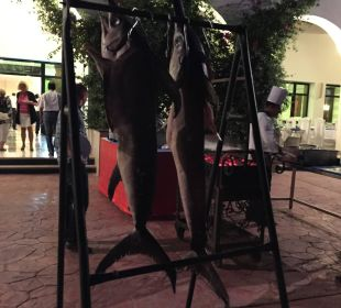 Schwertfisch zum Abendessen