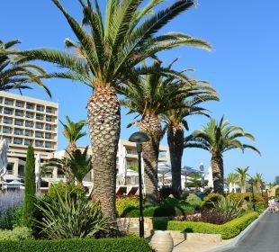 Gartenanlage Sani Beach