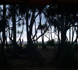 Blick vom Bungalow zum Strand Hotel Ranweli Holiday Village