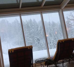 Ruheraum Alm- & Wellnesshotel Alpenhof