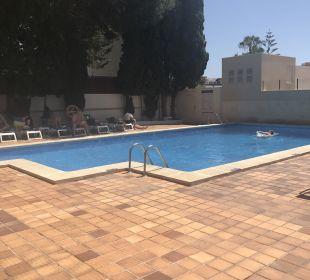 Pool Appartments Pabisa Orlando