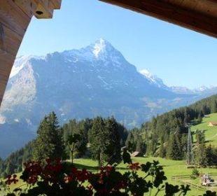 Blick aus dem Zimmerfenster auf den Eiger Hotel Berghaus Bort