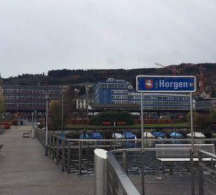 Blick vom Steg auf das Hotel (blaues Gebäude) Hotel Meierhof