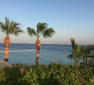 Ausblick am Pool von der Liege Cyrene Grand Hotel