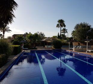 Pool Finca Amapola