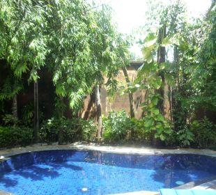 Privater Villenpool Villa Nduru Villas Parigata Resort