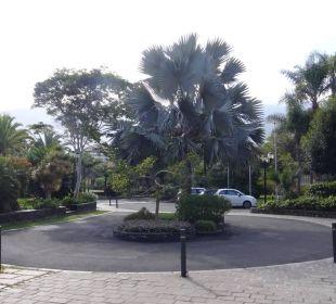 Einfahrt Hotel Hotel Tigaiga