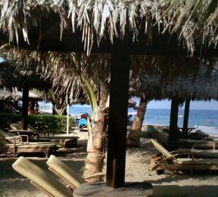 Strand mit viel Schatten Hotel Le Meridien Al Aqah Beach Resort