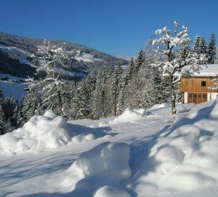 Ausblicke Appartement Almrausch Wörglerhof Alpbacher Hüttenappartements & Saunaalm