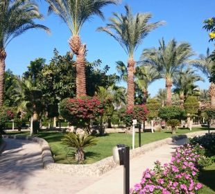 Hier geht man durch um zum Strand zu kommen Festival Le Jardin Resort (geschlossen)