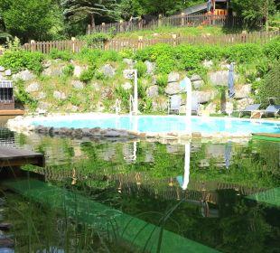 Schwimmbad und Schwimmteich Gartenhotel THERESIA