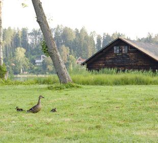 Gartenanlage Inselhotel Faakersee