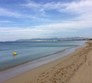 Der schöne Strand am Ballermann 9 Hotel Palma Playa - Cactus