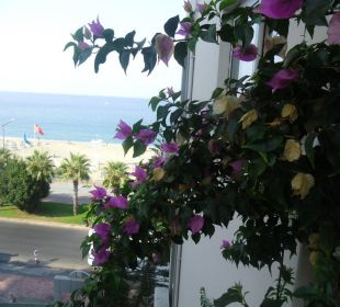 Balkon  Hotel Kleopatra Celine