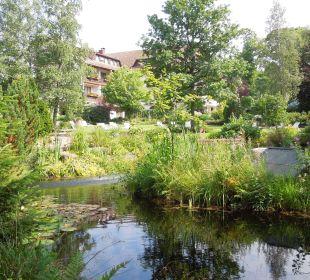Entspannung am Wasser Waldblick Hotel Kniebis
