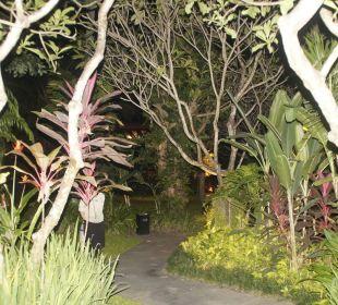 Verschlungene wege...? Anantara Bophut Koh Samui Resort