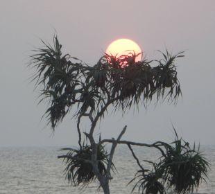 Sonnenuntergang am Strand Hotel Susantha Garden