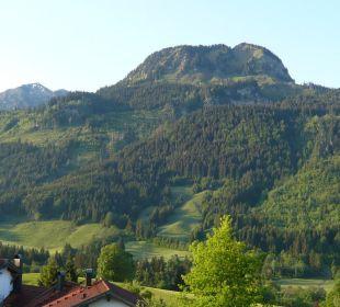 Ausblick vom Zimmer Schwandenhof Ferienwohnungen