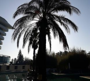 Abendstimmung Hotel Concorde De Luxe Resort