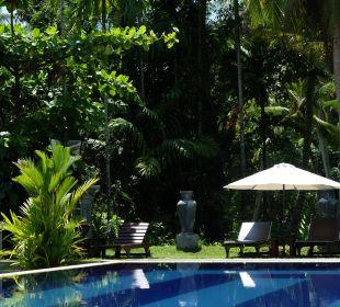 Blick in den Dschungel Amal Villa