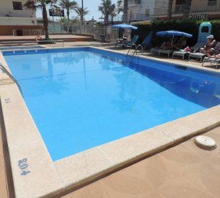 Pool Sicht 2 JS Hotel Sol de Can Picafort