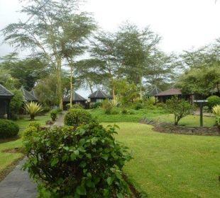 Im Garten Hotel Lake Nakuru Lodge