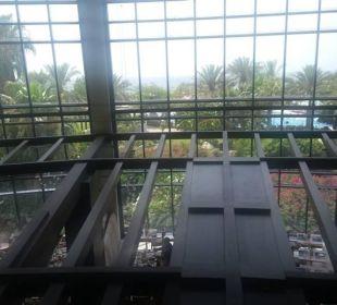 Great choices Hotel Le Meridien Al Aqah Beach Resort