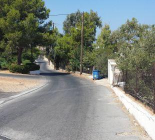 Weg/Straße  zum Haupteingang Hotel King Minos Palace