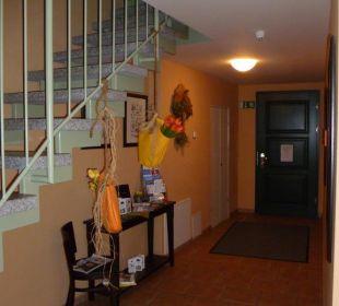Eingang und Aufgang zu den Zimmern Altstadtpension am Dom