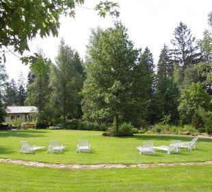 Natur Waldblick Hotel Kniebis