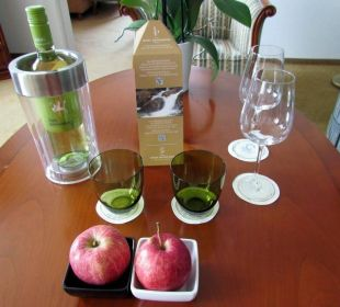 Welcome pack for Suite St. Stephan's Cathedral Hotel Am Parkring