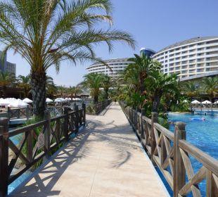 Blick vom Strand zum Hotel Hotel Royal Wings