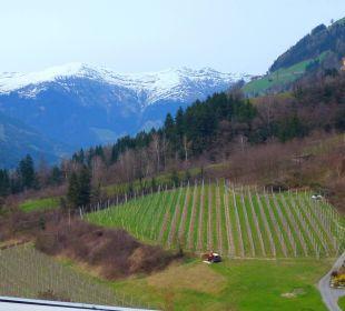 Aus dem Zimmer - Passeiertal Hotel Alpenhof Passeiertal