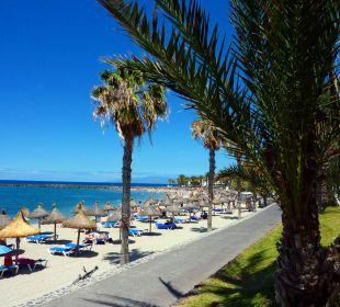 Hotelbilder apartamentos parque santiago 3 in playa de las americas holidaycheck - Apartamentos parque santiago ...