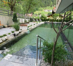 Pool Hotel Nesslerhof