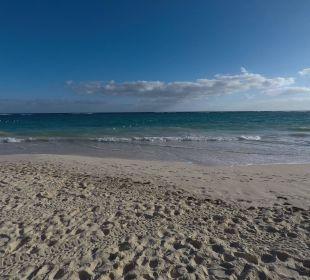 Blick aufs Meer vom Hotelstrand IBEROSTAR Hotel Punta Cana