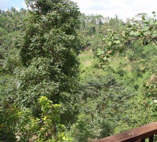 Blick vom Balkon Hotel Nandini Bali Jungle Resort & Spa